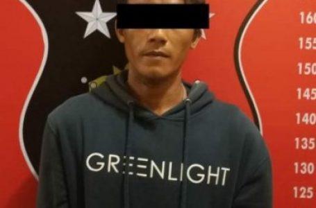 Pencuri 9 Tandan Kelapa Sawit Diringkus Satreskrim Polresta Deli Serdang