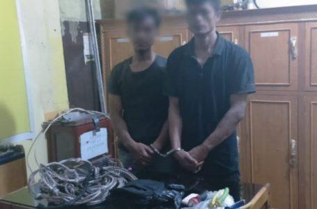 2 Pelaku Pencurian Sarang Walet Ditangkap Polsek Bangkinang Barat
