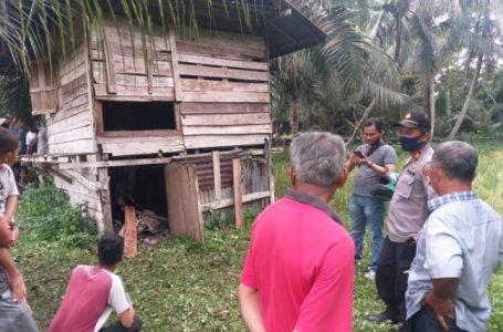 Heboh Warga Desa Pulau Tinggi Temukan Pria Gantung Diri