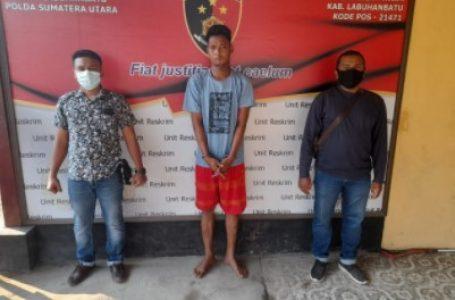 Pencuri Sapi Dijebloskan ke Sel Polsek Bilah Hilir