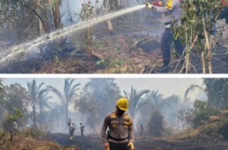 Kapolda Riau Gencar Padamkan Api Karhutla di Pulau Merbau dan Bengkalis