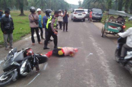 Guru SMKN 1 Setia Janji Tewas Ditabrak Mobar Pick Up